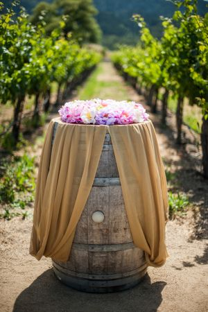Indian_Brix_Sonoma_Napa_winery_wedding_0002.JPG