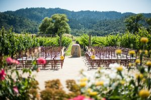 Indian_Brix_Sonoma_Napa_winery_wedding_0016.JPG
