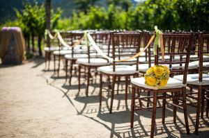 Indian_Brix_Sonoma_Napa_winery_wedding_0018.JPG