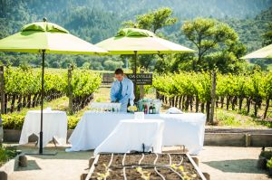 Indian_Brix_Sonoma_Napa_winery_wedding_0023.JPG