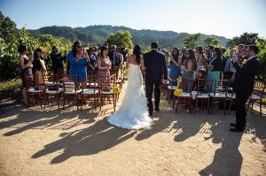 Indian_Brix_Sonoma_Napa_winery_wedding_0043.JPG
