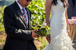 Indian_Brix_Sonoma_Napa_winery_wedding_0051.JPG