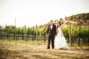 Indian_Brix_Sonoma_Napa_winery_wedding_0125.JPG