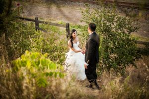 Indian_Brix_Sonoma_Napa_winery_wedding_0126.JPG