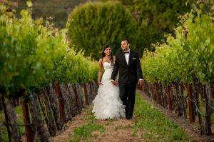 Indian_Brix_Sonoma_Napa_winery_wedding_0137.JPG