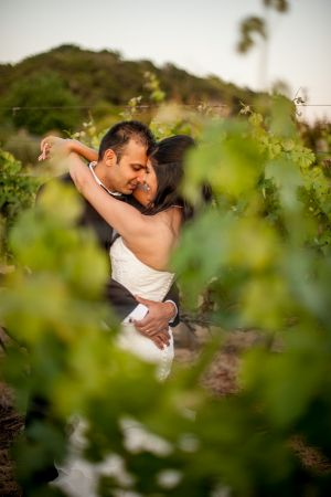 Indian_Brix_Sonoma_Napa_winery_wedding_0142.JPG